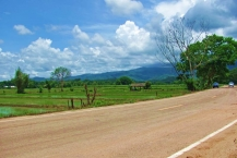 Fertile Farm Land 2 rai in Mae Lao